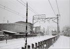 この写真がいつ撮影されたか正確な日時は不明ですが、昭和58年~59年にかけては全国的に大雪(五九豪雪)にみまわれました。<br /> 国立でも昭和59年1月19日、15年ぶりの大雪に見舞われ、15㎝を超える積雪が記録されました。
