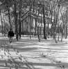 伊与田昌男撮影。「国立東京療養所の雪景色」の別カット。